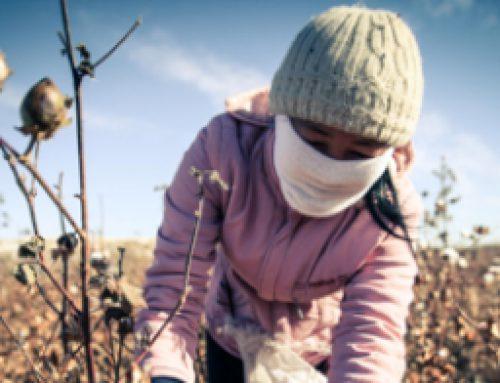 Kinderarbeit in usbekischer Baumwollindustrie